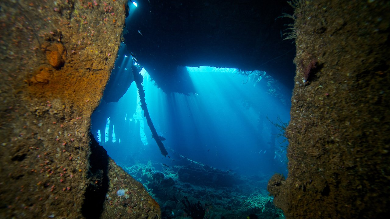 Maldives Snorkel Kuredu Shipyard Wreck