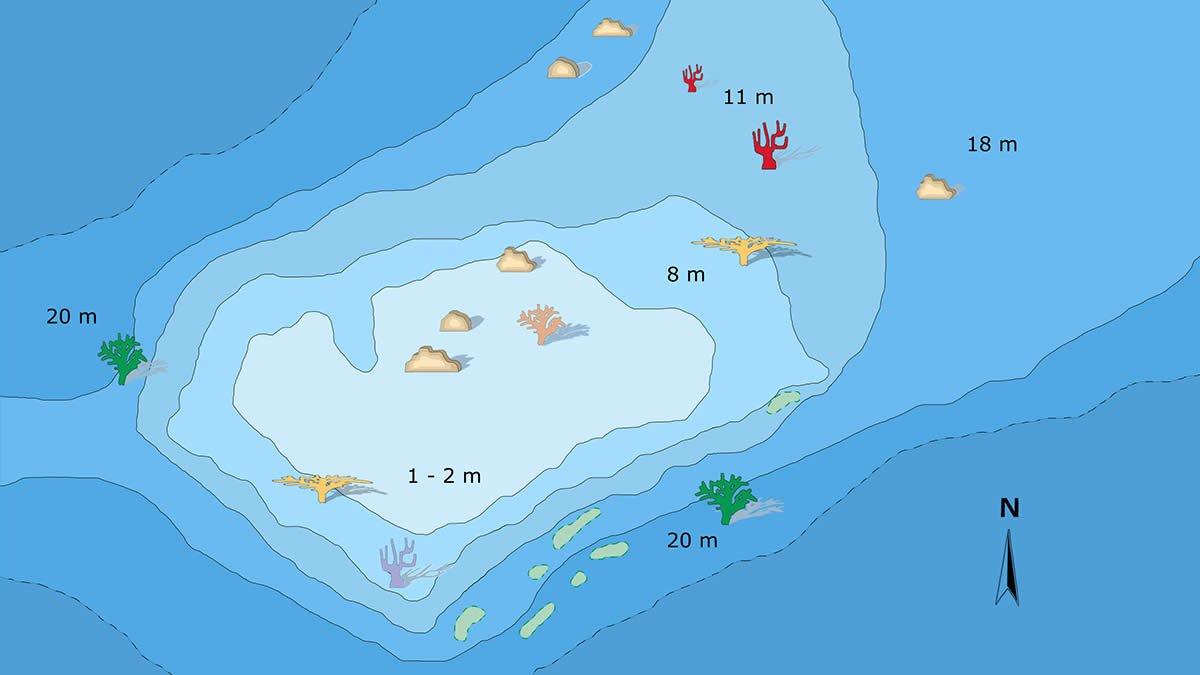 Vakarufalhi house reef dive