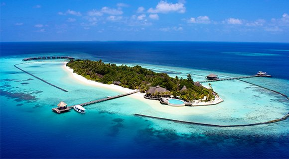 dive the maldives