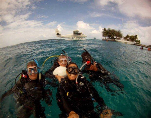 dive the maldives