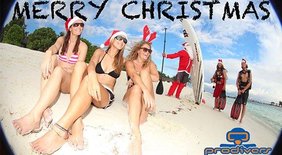 Prodivers Maldives Christmas