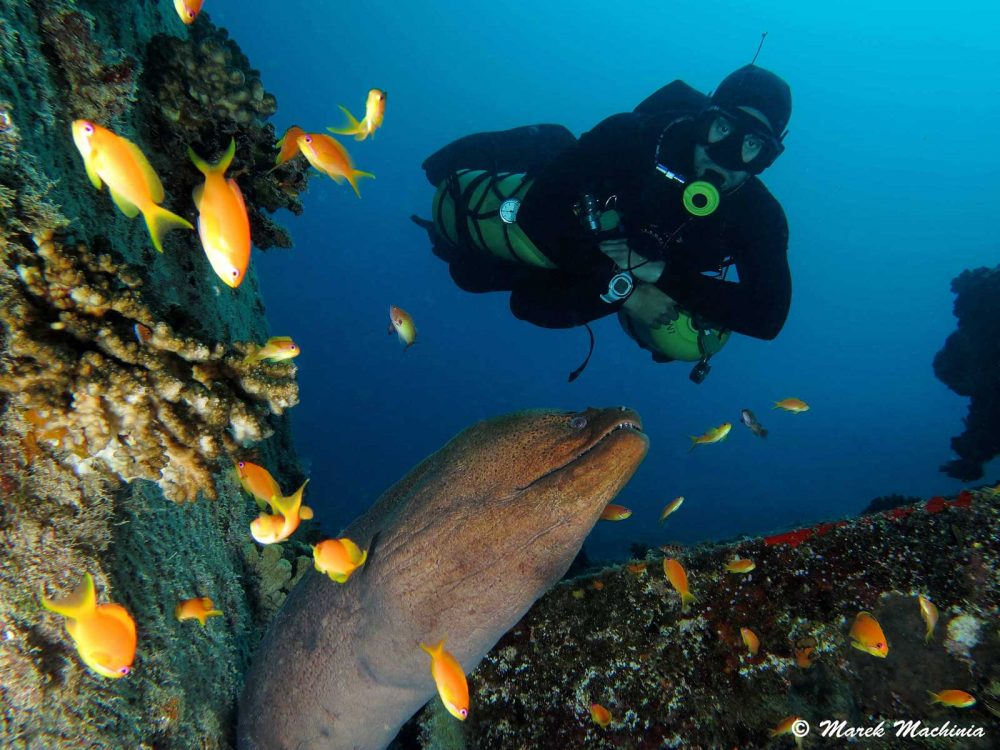 Sidemount diving Prodivers Maldives