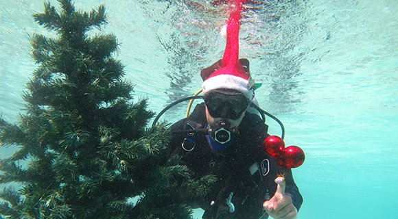 Maldives Christmas Scuba Diving