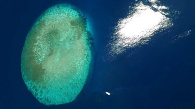 Maldives scuba diving reefs