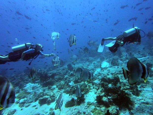 Family diving holiday Maldives