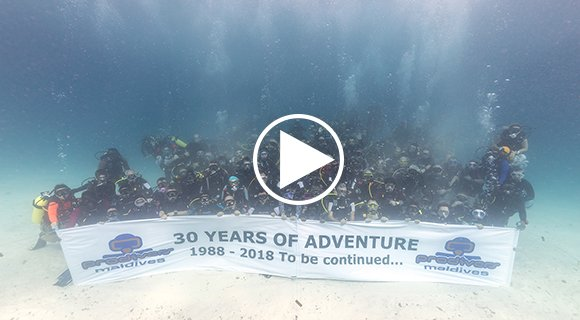 Maldives Dive Center Anniversary