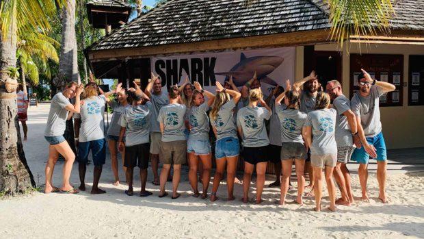 Shark Week celebrations Kuredu Maldives