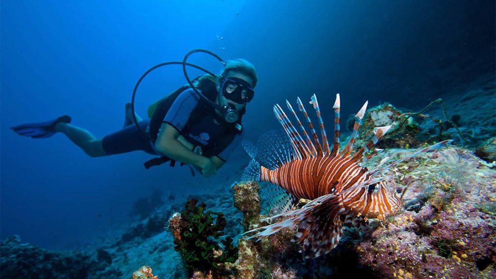 Maldives diver with Lionfish