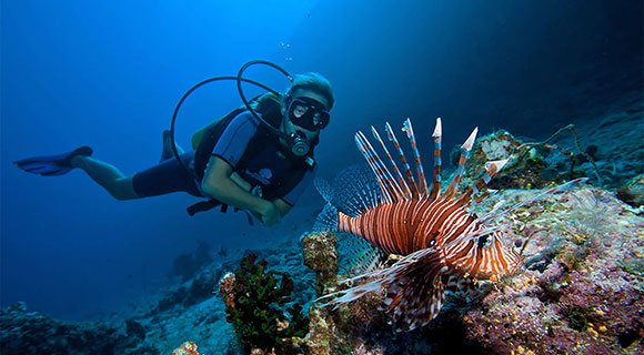 Maldives diver with Lionfish