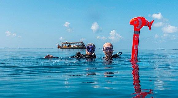 Maldives divers